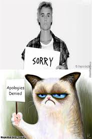 Memes Sorry - sorry not sorry nice song jb by nrpyeah meme center