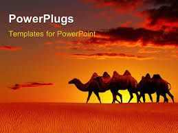 powerpoint template lion in desert top of the food chain power