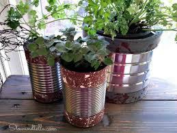 Herb Garden Winter - 14 winter planter ideas for when you u0027re missing your garden hometalk