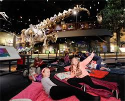 sleepovers perot museum of nature and science