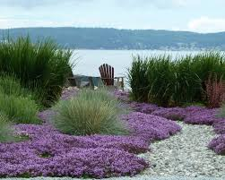 pictures beach cottage landscaping ideas best image libraries