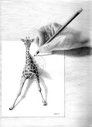 giraffe drawings fine art america