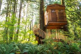 britney spears would love these high design treehouses