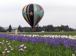 25 best things to do in salem oregon