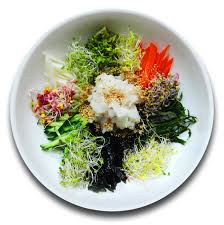 bob cuisine free images dish meal produce vegetable seaweed cuisine