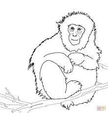 snow monkey on the tree by ohara koson coloring page free
