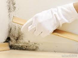 how to get rid of musty smell in furniture how to get rid of musty smell in basement basements ideas