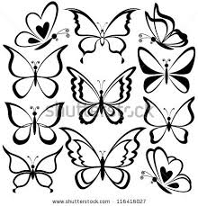 various butterflies black contours on white background vector