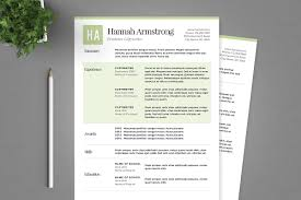 copywriter resume template green resume template package resume templates creative market