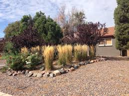 how to control weeds in a rock garden ask an expert