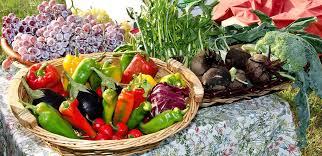 the acid u0026amp alkaline food balance u2013 petal life