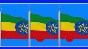 London Flag Ethiopian Flag Day Celebrated In London Ethiopian Embassy Oct 2016