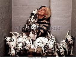 102 dalmatiner 102 dalmatians glenn stock photos u0026 102 dalmatiner