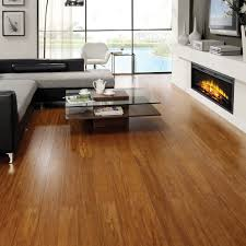 Laminate Flooring Pros And Cons Flooring Interesting Dark Bamboo Flooring Pros And Cons With Wood