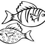 nemo fish coloring pages realistic gekimoe u2022 112816