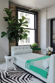 Small Bedroom Ideas With Daybed Small Living Room Ideas Before And After Studio Home Element