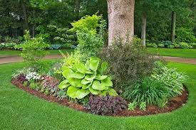 Backyard Trees For Shade - landscaping ideas around trees pictures google search u2026 pinteres u2026