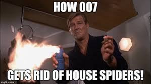 Roger Meme - image tagged in roger moore imgflip
