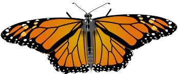 file monarch butterfly svg wikimedia commons