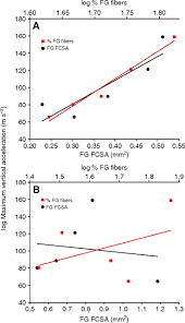 Max Stair Riser by How Muscles Define Maximum Running Performance In Lizards An