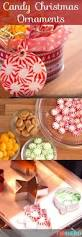 170 best christmas kitchen images on pinterest christmas ideas