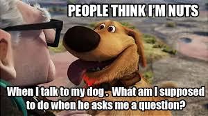 Dog Lover Meme - funny pet meme for dog lovers imgur