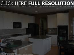 New Kitchen Cabinet Cost Plywood Kitchen Cabinets Cost Kitchen Decoration