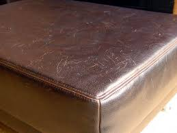 How To Repair Scratched Leather Sofa Leather Learn All About Leather How To Clean Restore It