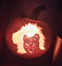 lion king pumpkin carving ideas your pictures lincoln u0027s most creative halloween pumpkins
