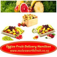 office fruit delivery for more detail once visit at http molesworthfruit co nz office