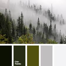 color matching dark green gray color misty forest colors