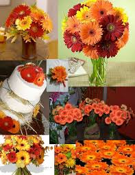 autumn thanksgiving flowers colonial flower shop ronkonkoma ny