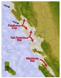 San Francisco Fog Map by The Cold California Coast Where Fog And Pinot Noir Reside