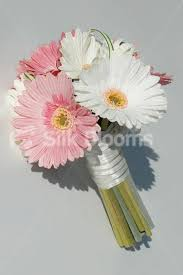 gerbera bouquet 35 best my flowers images on gerbera daisies wedding