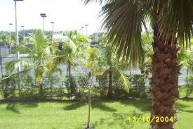 vacation village at weston weston florida timeshare resort redweek