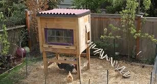 backyard chicken coop designs 22 diy chicken coops you need in