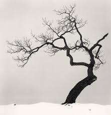 i this tree design ink inspiration tree