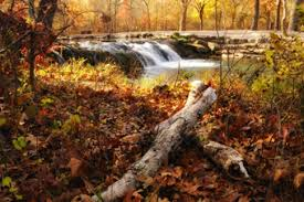 fall foliage places oklahoma bestoklahomahomes