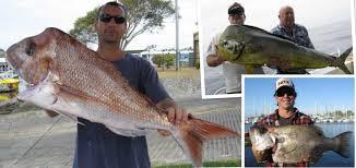moreton island fishing charters smarterfishingcharters au