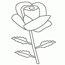 rose drawing for kids how to draw a rose flower easy step step