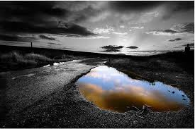 black and white pictures of photos 50 wonderful black white photos with partial color effects