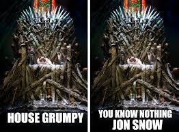 Chair Game Of Thrones Grumpy Cat Claims The Iron Throne