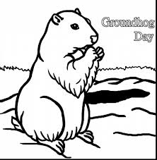 groundhog coloring pages kids coloring pages