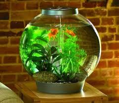 biorb 60 silver aquarium with standard led light gardensite co uk