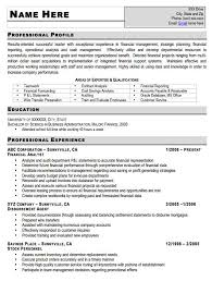 Military Resume Examples by Sample Resume For It Professional 7 Professional Resume Sample It