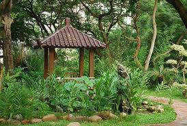 Hong Kong Zoological And Botanical Gardens Hong Kong Zoological And Botanical Gardens Photo Hong Kong