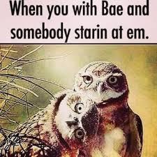 Relationship Memes For Him - funny memes for him memes best of the funny meme