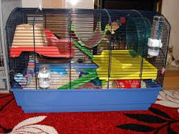 Hamster Cages Cheap E Midlands Syrian Male Hamster And Cambridge Cage Reptile Forums