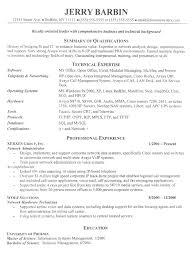 Resume Vitae Sample by 8 It Curriculum Vitae Sample Debt Spreadsheet