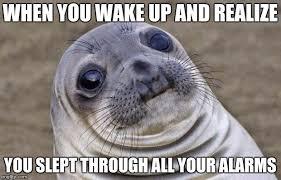 Alarm Meme - awkward moment sealion meme imgflip